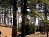 cabin5_porch-jpg